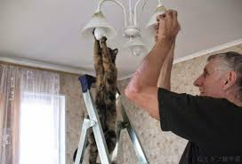 home maintenance changing light bulb
